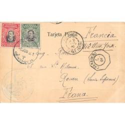 Mayotte - Allée de...